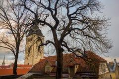 TALLINN, ESTONIA: St Nicholas «kościół, Niguliste kościół, Niguliste kirik Dzisiaj mieści gałąź muzeum sztuki Estonia ja obrazy royalty free