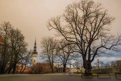 TALLINN, ESTONIA: St Nicholas «kościół, Niguliste kościół, Niguliste kirik Starej karpy drzewny fiszorek, piękny jesień krajobraz zdjęcie stock
