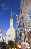 Tallinn, Estonia, street of the old city with bright houses and a town hall spike Stock Photo