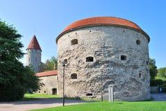 Tallinn, Estonia. Torre de Margarita gorda Fotografía de archivo
