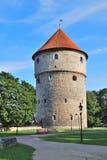 Tallinn, Estonia. Torre medievale Kiek-in-de-Kok Immagine Stock Libera da Diritti