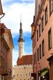 Tallinn, Estonia. A weather vane Old Thomas on the Town hall tower Royalty Free Stock Photos