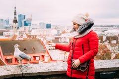 Tallinn, Estonia. Young beautiful pretty caucasian girl woman Stock Images