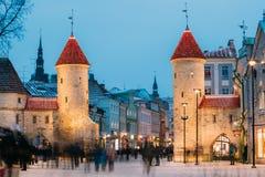 Tallinn, Estonie Porte célèbre de Viru de point de repère dans l'éclairage routier A Photos stock
