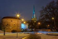 Tallinn Fat Margaret Tower Stock Photo