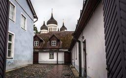 Tallinn gammal stadsgata i tråkig skum regnig afton arkivbild