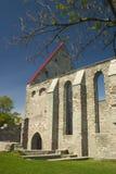 Tallinn gotisches II Lizenzfreie Stockfotos