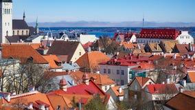 Tallinn horisont, Estland Flyg- sikt av Tallinn Tallinn gammal stad, Estland Arkivfoton