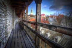 Tallinn - huvudstaden av Estland Arkivbilder