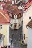 Tallinn i regnet royaltyfri foto