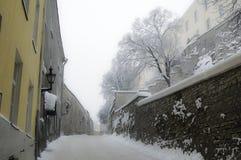 Tallinn i vintern Arkivfoto