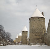 Tallinn im Winter Lizenzfreies Stockbild