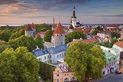 Tallinn. Royalty Free Stock Photos