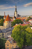 Tallinn. Stock Image