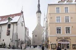 Tallinn in inverno Immagine Stock