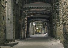 Tallinn in inverno Fotografia Stock Libera da Diritti
