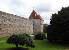 tallinn L'Estonia Fotografia Stock