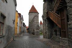 tallinn L'Estonia Immagini Stock Libere da Diritti