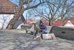 tallinn l'Estonie Vieille ville Toompea Photographie stock libre de droits