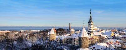 Tallinn miasta zimy panoramiczny krajobraz Fotografia Royalty Free