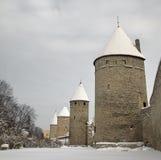 Tallinn no inverno Imagem de Stock Royalty Free