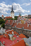 Tallinn. Old town Stock Images