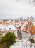 Tallinn old town clay tiles roofs Royalty Free Stock Photos