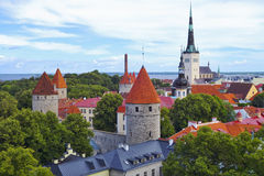Tallinn Old Town in summer. Royalty Free Stock Photo