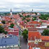 Tallinn old town view Royalty Free Stock Photography