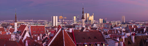 Tallinn panorama. With red roofs and church towers of old town and modern highrisers in the capital of Estonia Stock Photography