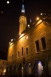 Tallinn, paysage urbain de nuit, hôtel de ville Photographie stock