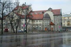 Tallinn piovosa fotografie stock libere da diritti