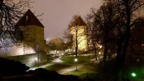 Tallinn rampart. Rampart of Tallinn by night Stock Photo