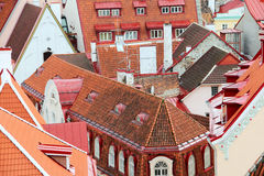 Tallinn roofs Royalty Free Stock Photography