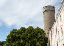 Tallinn`s Tall Hermann Tower Royalty Free Stock Photography