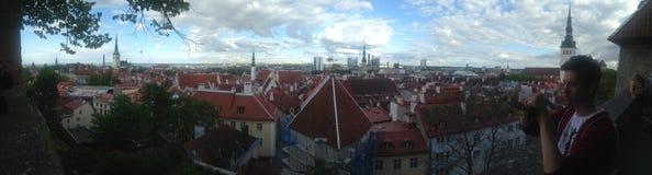 TALLINN-STADT, Panoramaansicht ESTLANDS im Mai 2016 - über Stadt von Tallinn während eines Sightseeing-Tours Lizenzfreie Stockfotografie