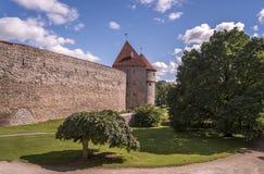 Tallinn - Stadtmauern Stockfotografie