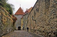 Tallinn, street long leg Stock Photo