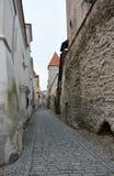 Tallinn streets Stock Photos
