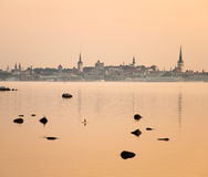Tallinn Sunset Royalty Free Stock Images