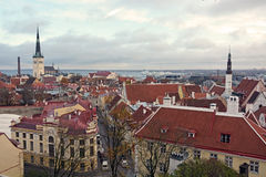 Tallinn from the top Stock Images