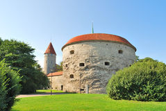 Tallinn. Torre gorda de Margarita Fotos de archivo libres de regalías