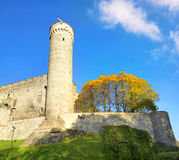 Tallinn tower Tall Germann. Estonia Royalty Free Stock Photo
