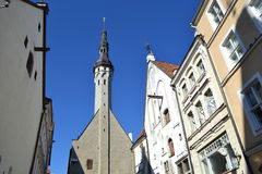 Tallinn Town Hall Royalty Free Stock Photos