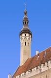 Tallinn Town Hall Stock Photos