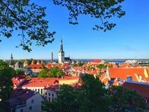 Tallinn velho Imagens de Stock Royalty Free