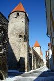 Tallinn vieja Fotografía de archivo