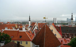 Tallinn. View from the observation deck of Tallinn Toompea Royalty Free Stock Image