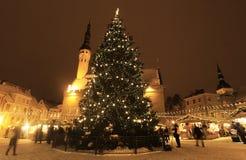 Tallinn-Weihnachtsmarkt mit chirstmas Baum Stockfotos