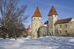 Tallinn in the winter Royalty Free Stock Image